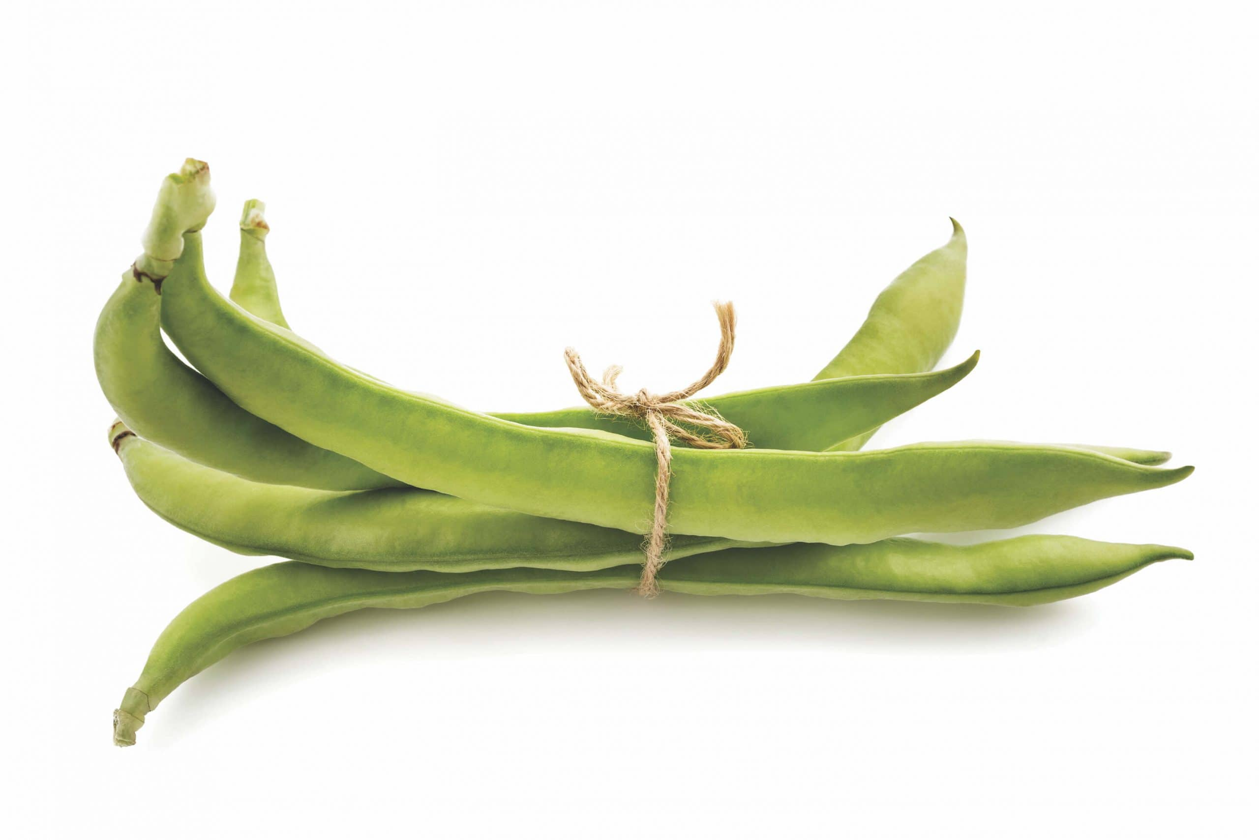 Spring Seasonal Star Broad Beans