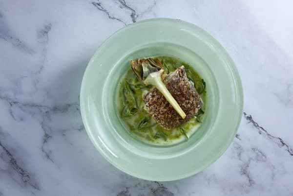 Meagre fillet with broad bean sauce